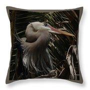 Heron Close-up Throw Pillow
