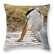 Heron Harpoon Throw Pillow