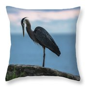 Heron In Colchester Throw Pillow