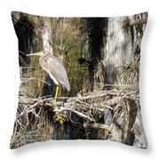 Heron In Everglades Throw Pillow