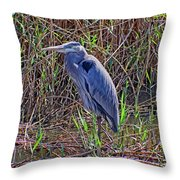 Heron In Marshes Throw Pillow