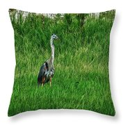 Heron In The Grasses Throw Pillow