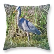Heron In The Wetlands Throw Pillow