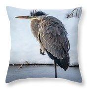 Heron On Ice Throw Pillow
