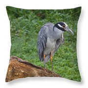 Heron On Log Throw Pillow
