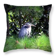 Heron On Pinetree Throw Pillow