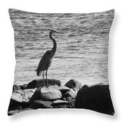 Heron On The Rocks Throw Pillow by William Selander