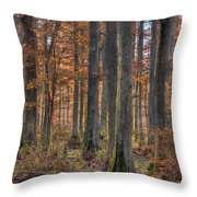 Heron Pond Dawn Throw Pillow