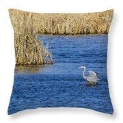 Heron Preening Throw Pillow