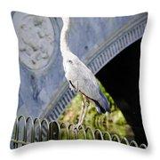 Heron Show Off Throw Pillow