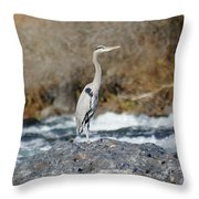 Heron The Rock Throw Pillow