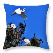 Heron Trio Throw Pillow