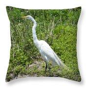 Heron Watching Throw Pillow