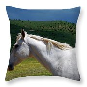 Hero's Horse-colorful Background Throw Pillow