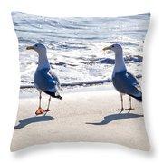 Herring Gulls On The Beach Throw Pillow