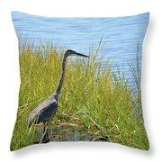 Herron In The Grasses Throw Pillow