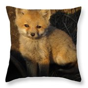 Here's Looking At You, Kit. Throw Pillow
