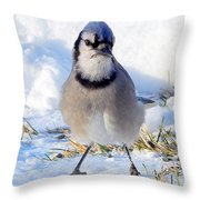 Hey Are You Talking To Me? Throw Pillow