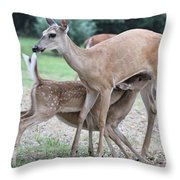 Hey, Can I Have Some? Throw Pillow