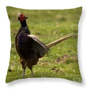 Hey Ho Throw Pillow