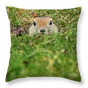 Hey...wha S'up Throw Pillow