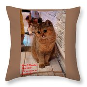 Hi My Name Is Sweetie Pie H A Throw Pillow