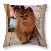 Hi My Name Is Sweetie Pie H B Throw Pillow
