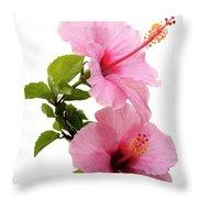 Hibiscus 7 V3 Throw Pillow