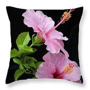Hibiscus 7 V4 Throw Pillow