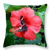 Hibiscus And Butterfly Diners Throw Pillow