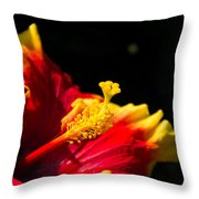 Hibiscus Bloom 3 Throw Pillow