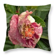 Hibiscus Bloom Closed In The Rain   End View      May           Indiana      Throw Pillow