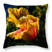 Hibiscus Blooms Throw Pillow