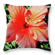 Hibiscus - Dew Covered - Beauty Throw Pillow