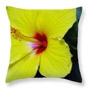 Hibiscus Flower 1 Throw Pillow