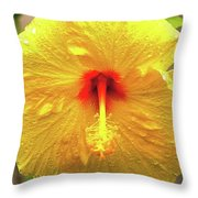 Hibiscus Flower After The Rain Throw Pillow