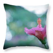Hibiscus Flower In A Garden Throw Pillow