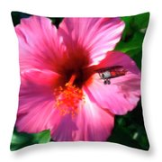 Hibiscus Fly-by Throw Pillow