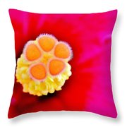 Hibiscus Glow Throw Pillow