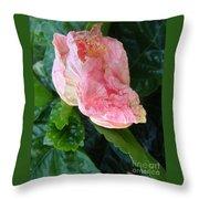 Hibiscus Heaven Throw Pillow