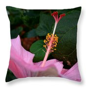 Hibiscus Pink Flower Throw Pillow