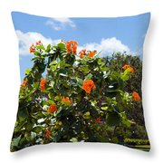 Hibiscus Rosasinensis With Fruit Throw Pillow