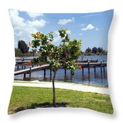 Hibiscus Rosasinensis With Fruit On The Indian River In Florida Throw Pillow