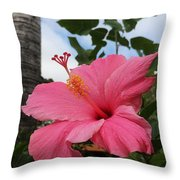 Hibiscus S D Z 1 Throw Pillow