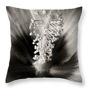 Hibiscus Secrets Throw Pillow