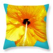 Hibiscus Test 4 Throw Pillow