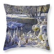 Hickory Nut Grove Landscape Throw Pillow