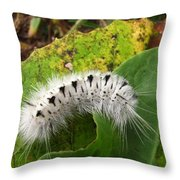 Hickory Tussock Throw Pillow