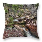 Hidden Beauty On The Trail Throw Pillow