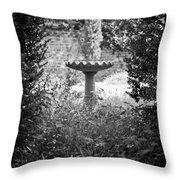 Hidden Bird Bath  Throw Pillow